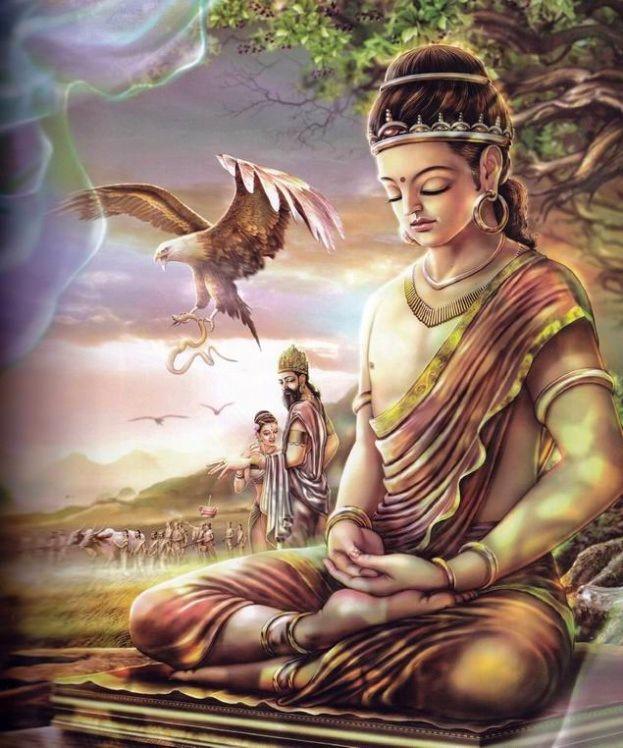 佛陀教给我们的减肥之法图片