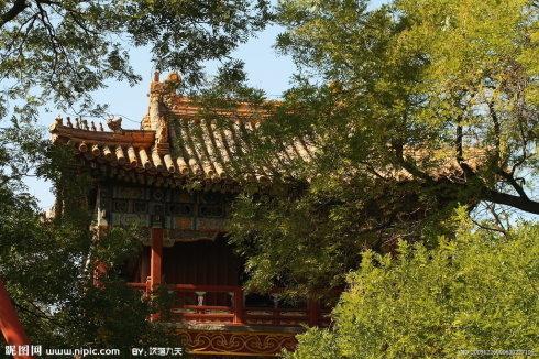 北京/北京雍和宫里的神奇佛像