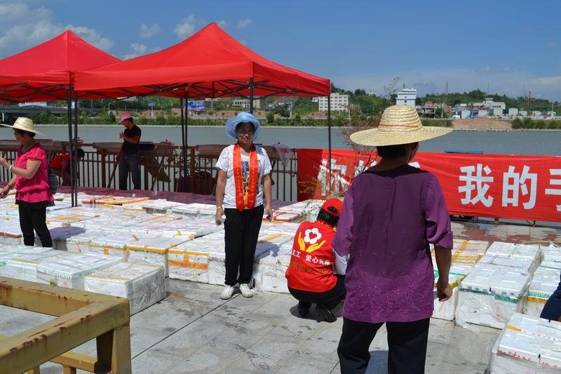 学佛网8月16日大型放生活动图片纪实 - wangqingwei421 - wangqingwei421的博客