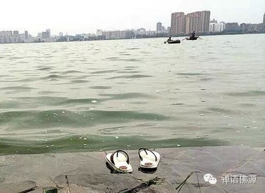 南湖岸边一男子钓鱼反被鱼拖走(图) - 妙音 - 妙音的博客
