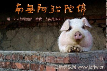 印光大师:曹操变猪,见者出家 - 莱芜 德广 - 莱芜 德广