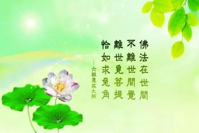王凤仪:无缘不聚、无债不来 - 妙音 - 妙音的博客