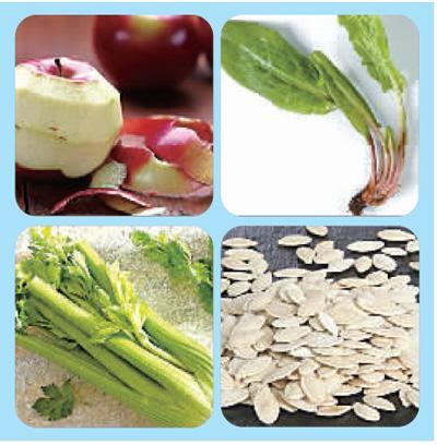 被丢掉的营养:菠菜根能排毒冬瓜籽降血脂 - 纯净心 - 纯净心