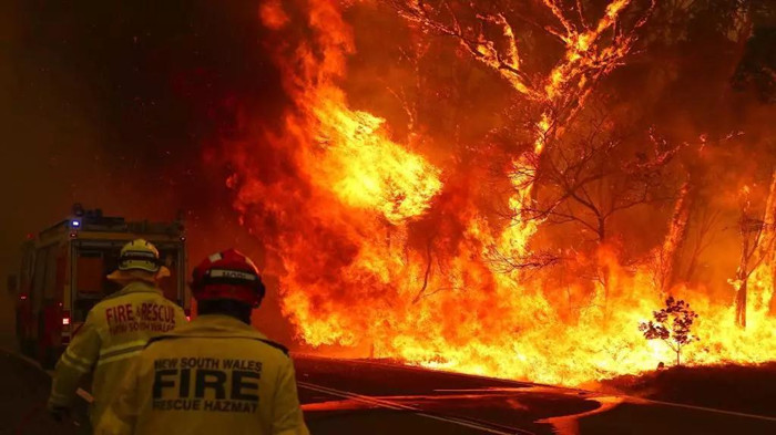 澳大利亚山火中:佛教寺院奇迹幸存(视频图片)