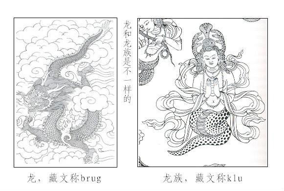 龙树菩萨去取经的龙宫,是龙族的宫殿.