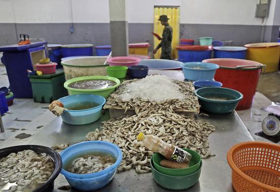 泰国军警在突击检查工作坊时,大量的虾被弃置在工作台上。(美联社)