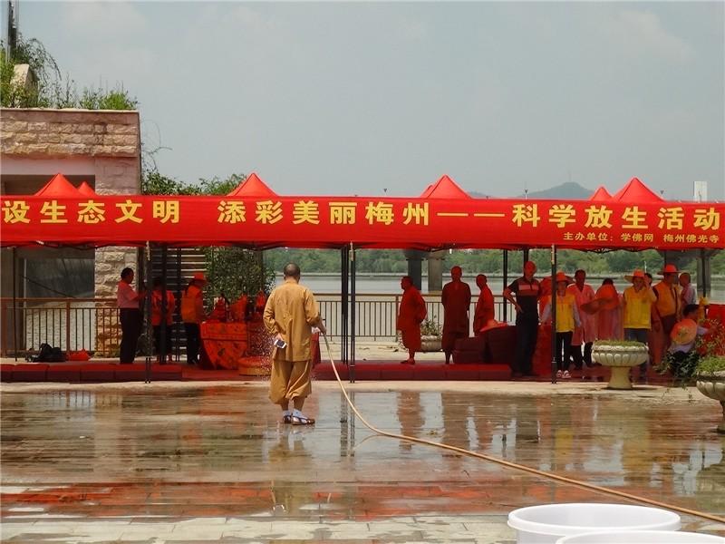 学佛网近期龙游 梅州大型放生活动图片,请进来随喜和回向图片